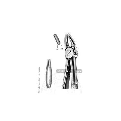 English Extracting Forceps No. 7