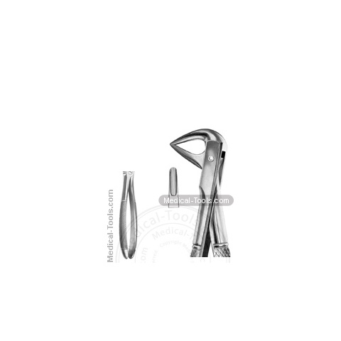 English Extracting Forceps No. 74 M