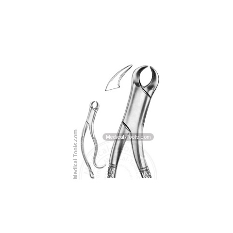 American Extracting Forceps No. 16