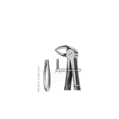 English Extracting Forceps No.33