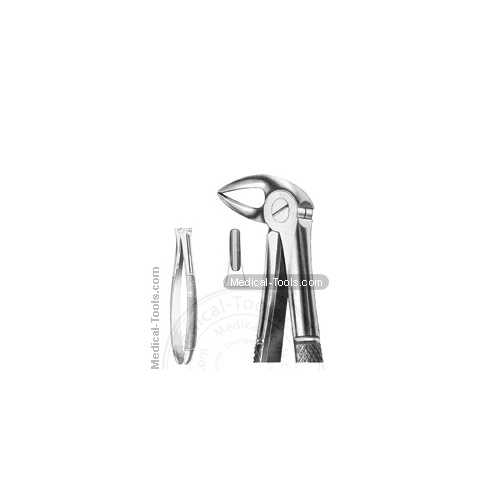 English Extracting Forceps MD3