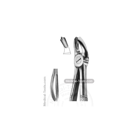 English Extracting Forceps No. 17 R