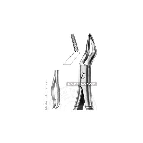 English Extracting Forceps No.101
