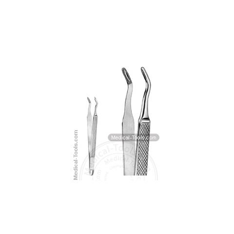 English Extracting Forceps No. 224