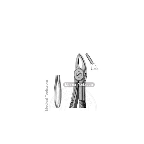 English Extracting Forceps No. 30S