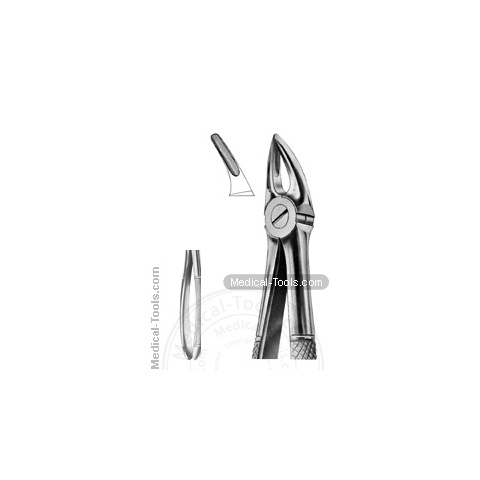 English Extracting Forceps No. 30