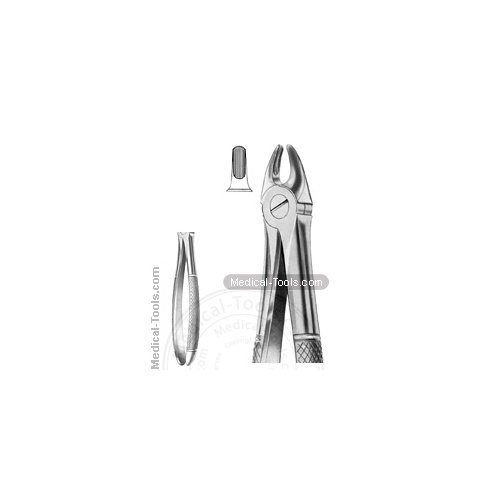 English Extracting Forceps No.107