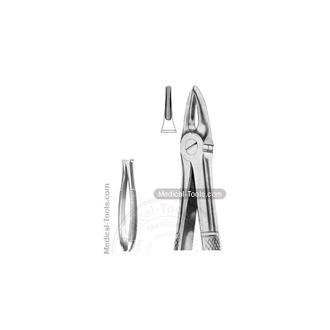 English Extracting Forceps No.113