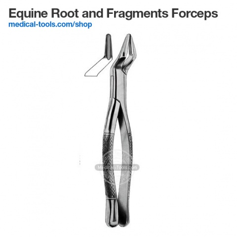 Equine Root Tip Extraction Forceps