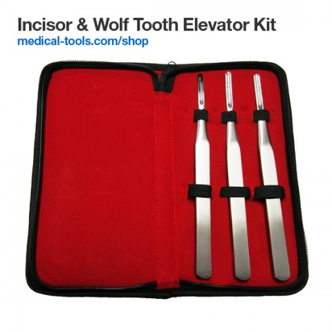 Incisors & Wolf Tooth Elevators Set