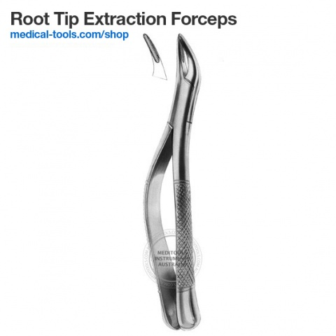 Equine Root and Fragments Forceps