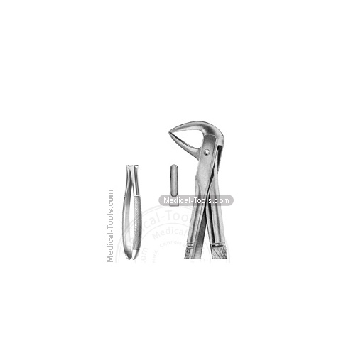 English Extracting Forceps No.114