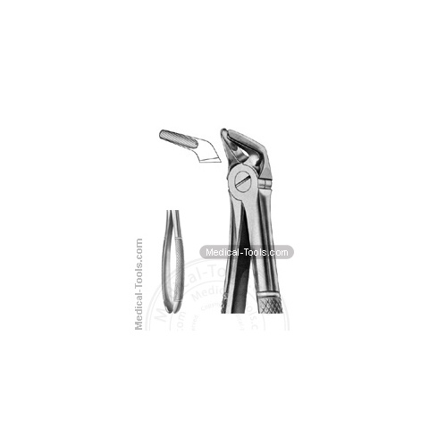 English Extracting Forceps No. 8