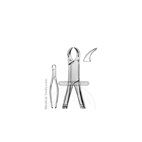 American Extracting Forceps No. 23 S