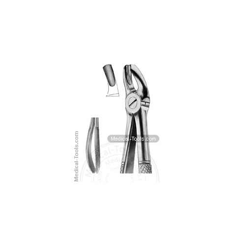 English Extracting Forceps No. 18 L