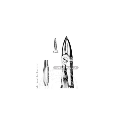 English Extracting Forceps No. 29 N