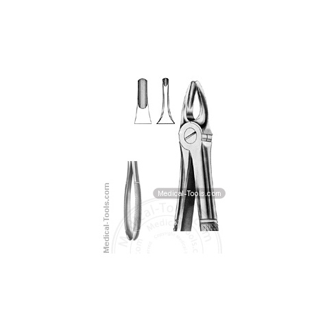 English Extracting Forceps No. 3