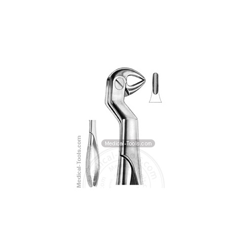 English Extracting Forceps No. 33.5 R