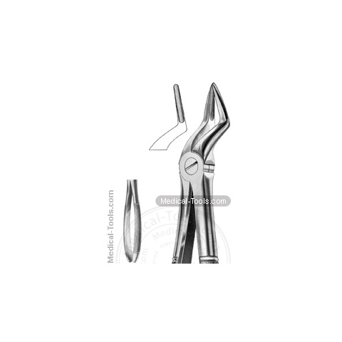 English Extracting Forceps No. 51A